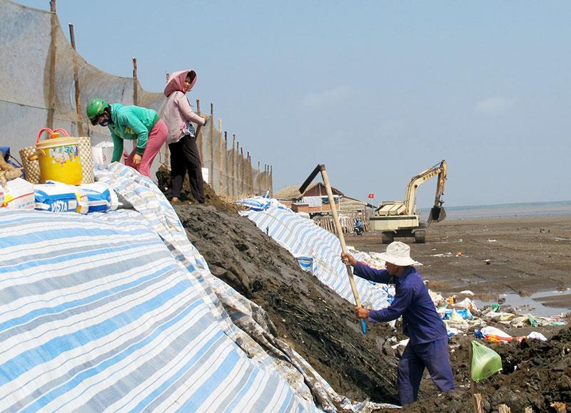 Người dân Cồn Ngoài, xã Bảo Thuận (Ba Tri) gia cố bờ kè. Ảnh: P. Hân