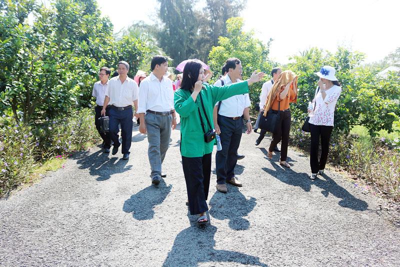Thầy, cô giáo tham quan tìm hiểu vườn trái cây theo mô hình nông nghiệp sạch của nông trại. Ảnh: Phan Hân