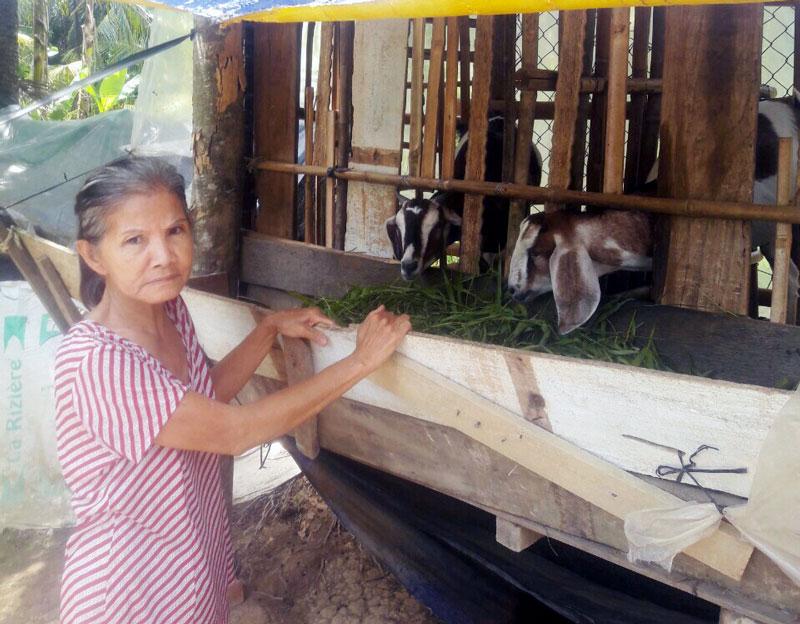 Chị Hàn Thị Mai, xã Phú Đức với mô hình chăn nuôi dê thoát nghèo.