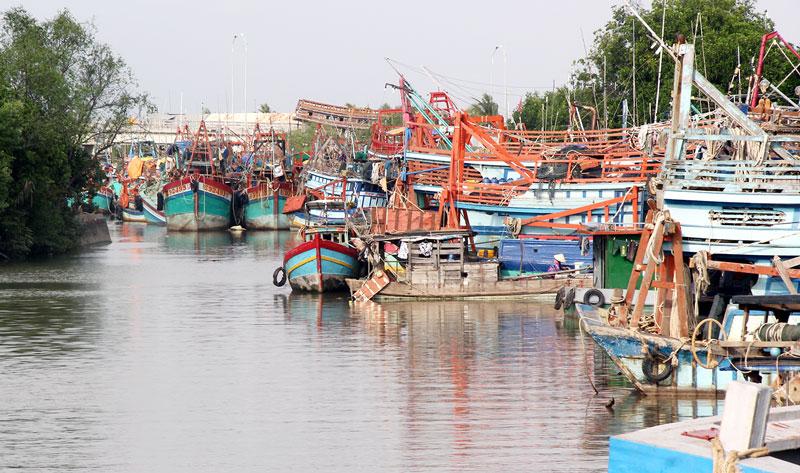 Các huyện biển đã được đầu tư xây dựng cảng cá, khả năng đáp ứng cho số lượng tàu cập bến mỗi ngày. Ảnh: Mã Phương