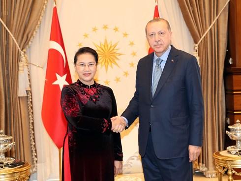 Chủ tịch Quốc hội Nguyễn Thị Kim Ngân tiếp kiến Tổng thống Thổ Nhĩ Kỳ Recep Tayyip Erdogan.