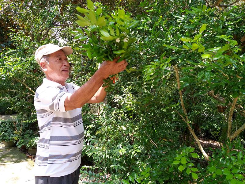 Ông Đặng Văn Soái thường xuyên dọn dẹp cảnh quan xung quanh nhà, góp phần giữ gìn môi trường chung trong xóm ấp sạch đẹp.  Ảnh: Thanh Đồng