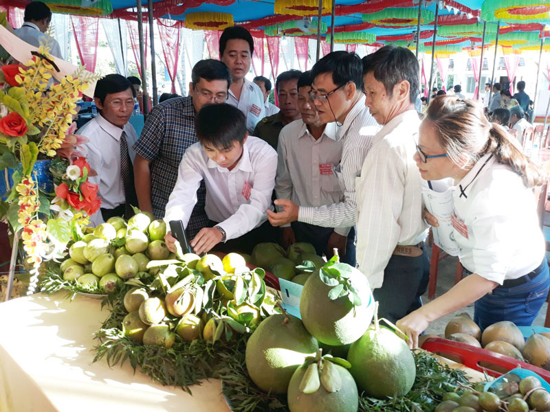 Ngày hội tạo điều kiện cho các hợp tác xã, tổ hợp tác trưng bày sản phẩm nông nghiệp. Ảnh: Cẩm Trúc