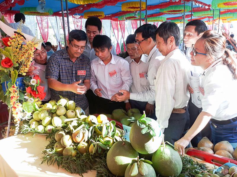 Hợp tác xã nông nghiệp Thành An (Mỏ Cày Bắc) trưng bày nông sản tại đại hội thường niên.