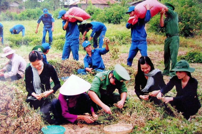 Chiến sĩ biên phòng giúp dân Thạnh Phong thu hoạch mùa đậu. Ảnh: P. Khánh
