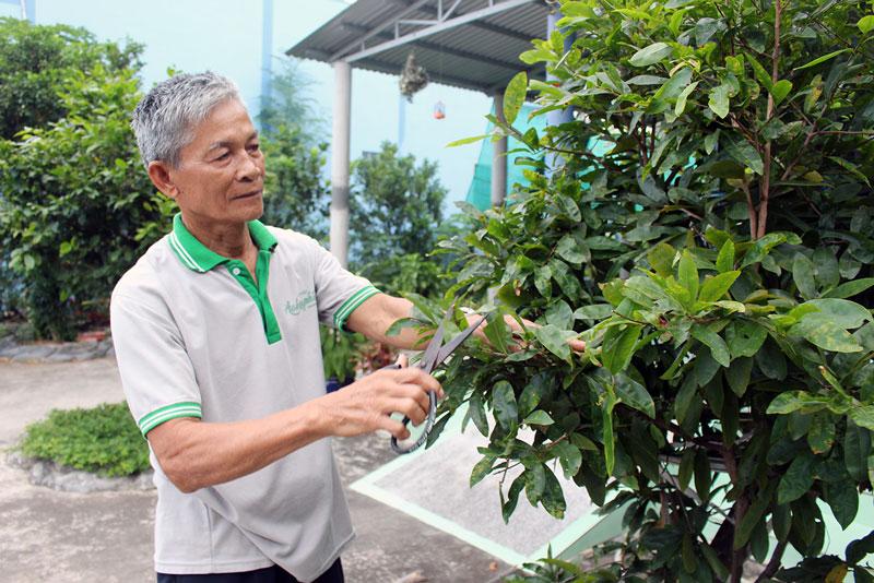 Ông Lê Văn Quí vui thú với công việc chăm sóc cây kiểng. Ảnh: H.Đ
