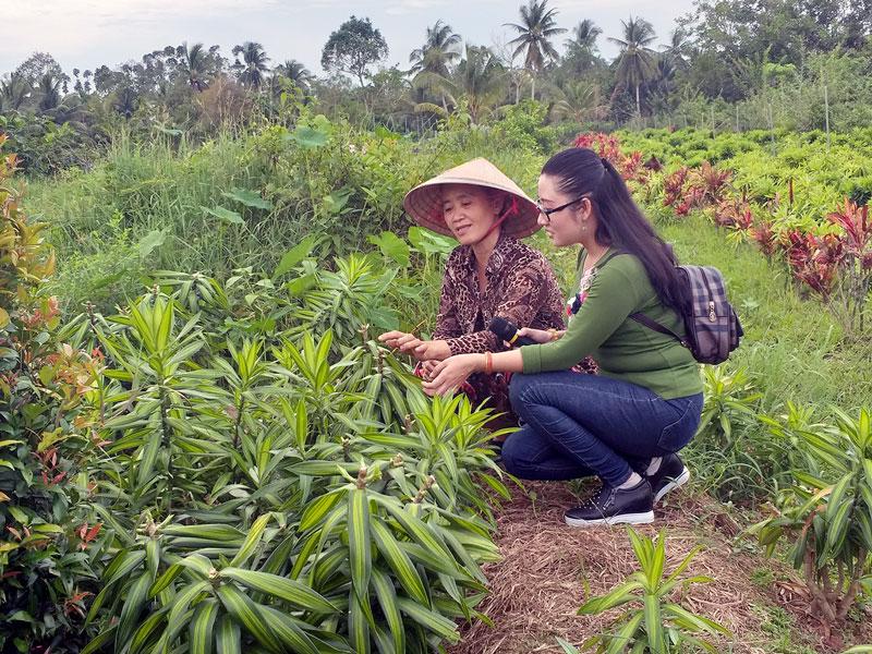 Nhà vườn hướng dẫn du khách tham quan vườn hoa kiểng.