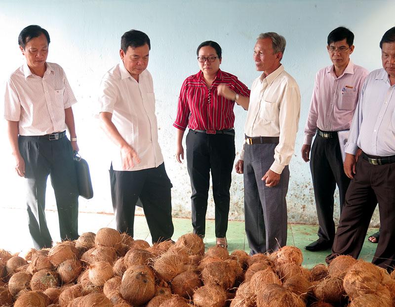 Bí thư Tỉnh ủy Võ Thành Hạo (thứ 2, từ trái sang) thăm Hợp tác xã nông nghiệp Định Thủy, Mỏ Cày Nam. Ảnh: T.Thảo