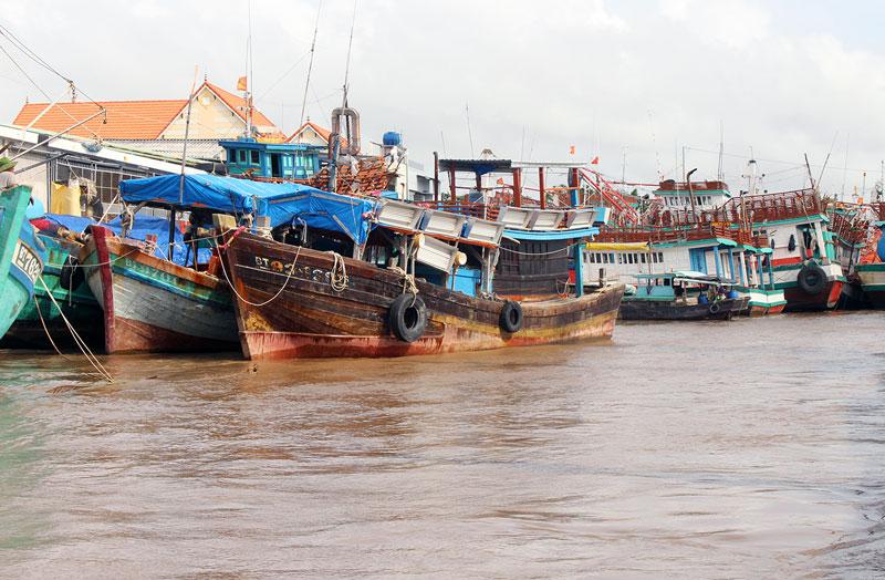 Tàu đánh bắt xa bờ huyện Ba Tri neo đậu tại bến. Ảnh: Đ. Chính