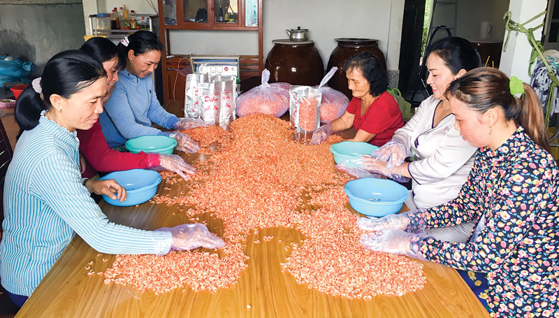 Phân loại, đóng gói tôm khô tại Cơ sở sản xuất tôm khô Diễm. Ảnh: Hoàng Mai