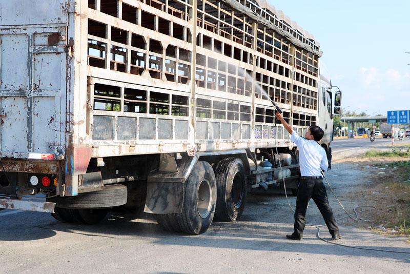 Phun sát trùng phương tiện rỗng vào tỉnh vận chuyển gia súc.