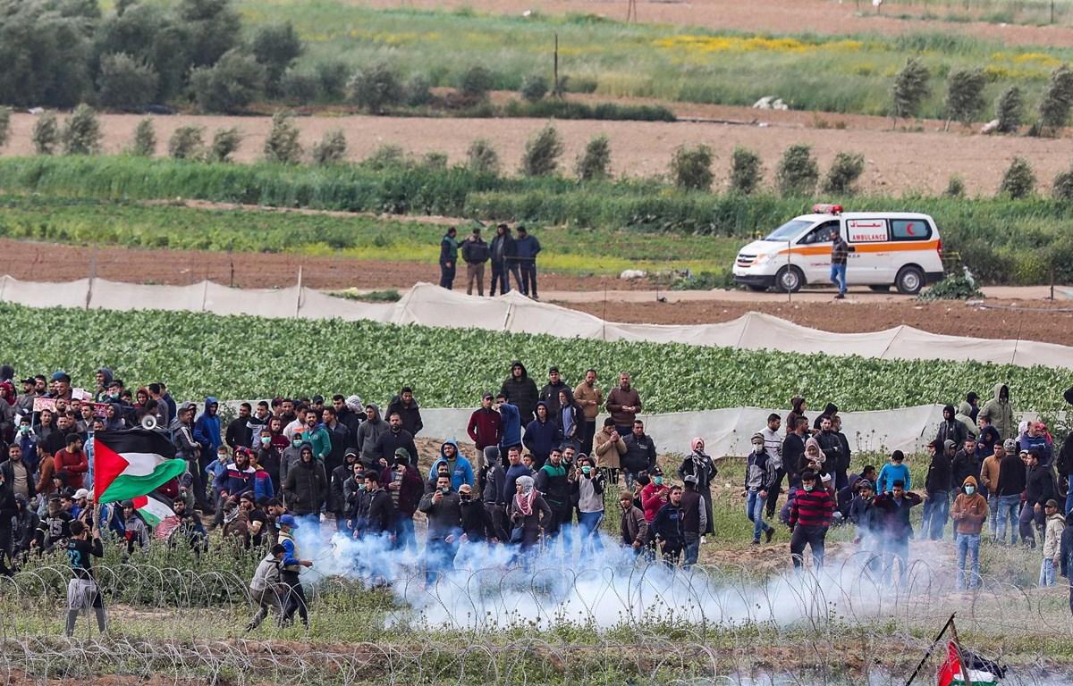 Người biểu tình Palestine xung đột với binh sĩ Israel tại khu vực hàng rào biên giới Israel-Gaza ngày 30-3-2019. Ảnh: THX/TTXVN