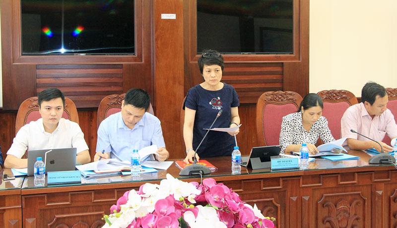 Bà Đỗ Thái Hà phát biểu tại buổi làm việc.