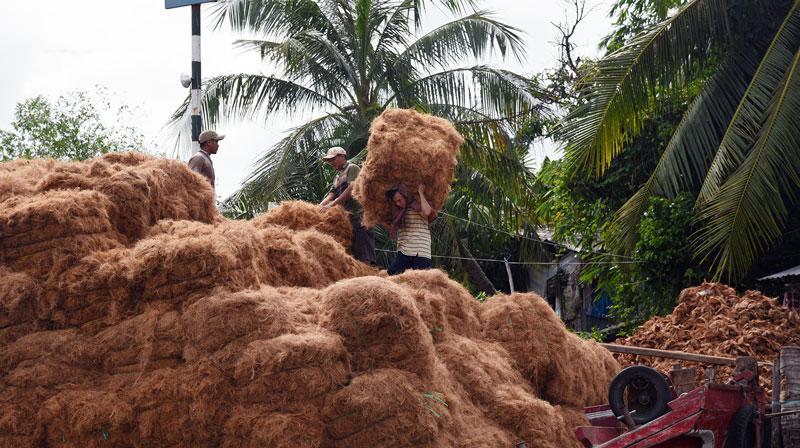 Vận chuyển chỉ xơ dừa tại một cơ sở sản xuất ở huyện Mỏ Cày Nam. Ảnh: Thanh Đồng