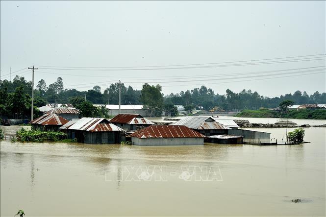 Cảnh ngập lụt tại Tangail, Bangladesh ngày 18-7. Ảnh: THX/TTXVN