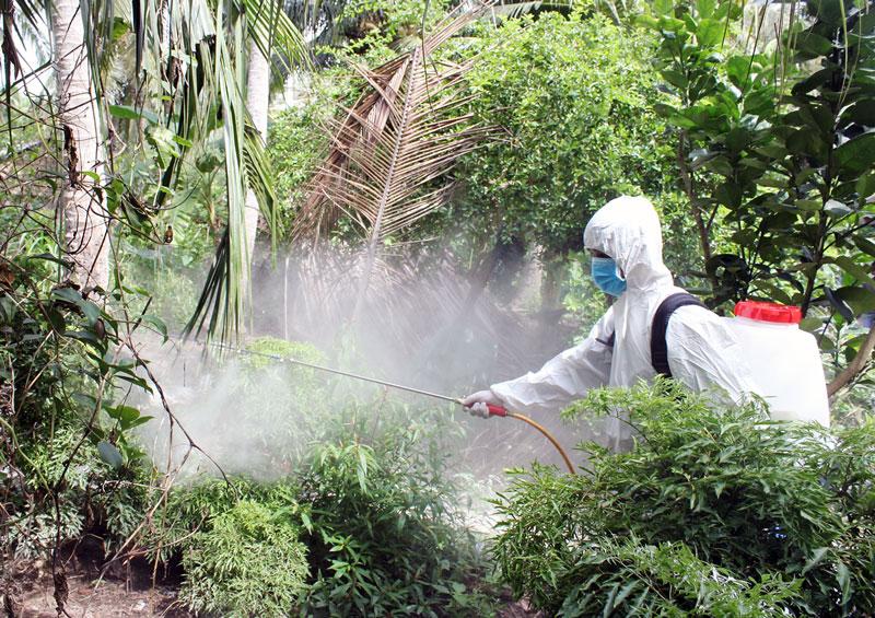 Phun thuốc tiêu độc, khử trùng dịch tả heo châu Phi tại xã Thạnh Phú Đông, huyện Giồng Trôm. Ảnh: H.Trung