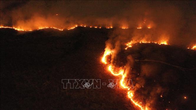 Các đám cháy tại rừng mưa Amazon ở bang Tocantins, Brazil, ngày 17-8. Ảnh: THX/TTXVN