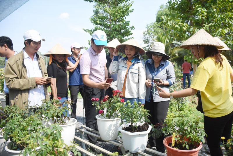 Doanh nghiệp khởi nghiệp Bến Tre giao lưu học tập mô hình khởi nghiệp tỉnh Đồng Tháp.
