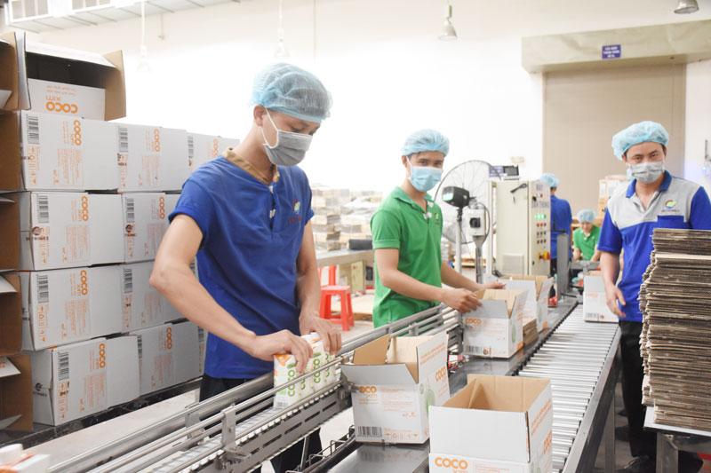 Chế biến các sản phẩm từ dừa tại Công ty Betrimex. Ảnh: Cẩm Trúc