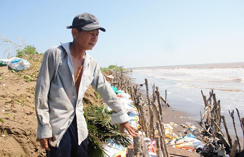 Người dân ven biển phải dùng cừ tràm ngăn sạt lở.
