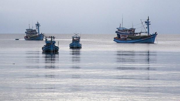 Tàu cá của ngư dân neo đậu trên vùng biển huyện đảo Phú Quốc (Kiên Giang). Ảnh: Hồng Đạt/TTXVN