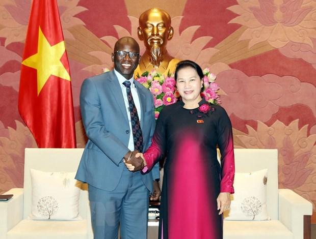 Chủ tịch Quốc hội Nguyễn Thị Kim Ngân tiếp Giám đốc Quốc gia Ngân hàng Thế giới tại Việt Nam Ousmane Dione. (Ảnh: Trọng Đức/TTXVN)