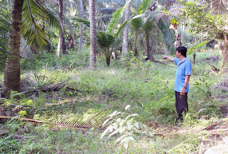 Ông Phạm Văn Hợp đứng trước mảnh đất của mình.  Ảnh: H. Đức