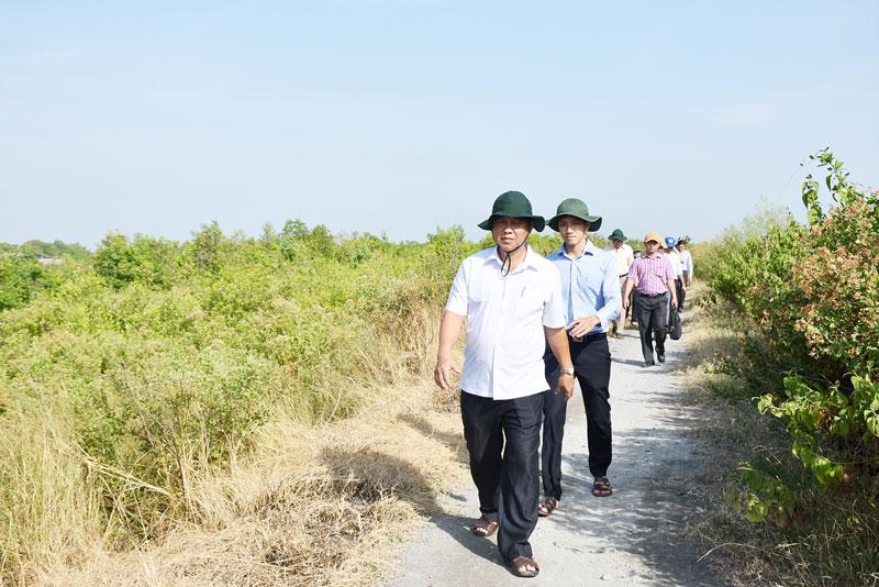 Bí thư Huyện ủy Ba Tri Võ Văn Phê cùng đoàn khảo sát kiểm tra công trình đê ngăn mặn.
