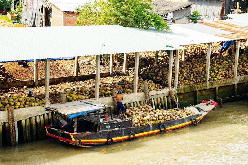 Chợ dừa sông Thom là một trong các điểm đến hấp dẫn của Mỏ Cày Nam. Ảnh: Phan Quang