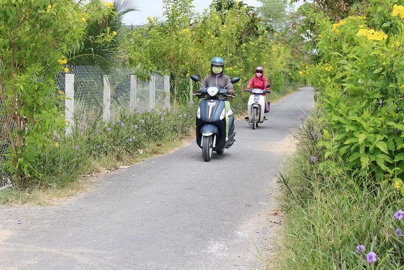 Tuyến đường hoa sáng - xanh - sạch đẹp Ấp Long Hòa 1, xã Long Định do HPN xã vận động xây dựng.