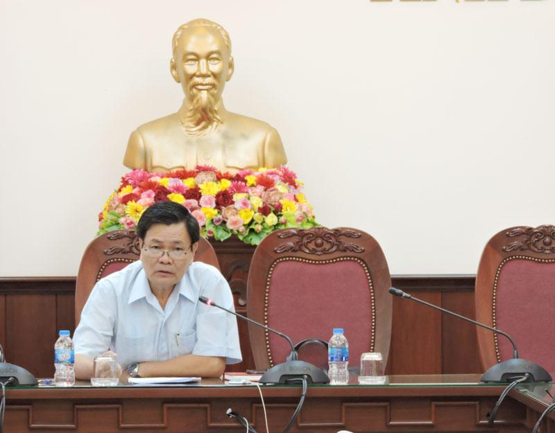 Phó chủ tịch UBND tỉnh phát biểu chỉ đạo tại buổi họp.