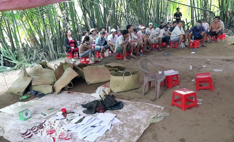 Triệt phá tụ điểm đá gà ở xã Nhuận Phú Tân, huyện Mỏ Cày Bắc.