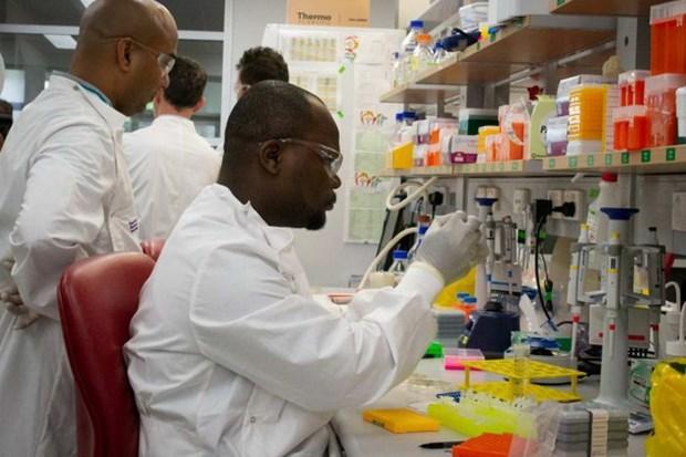 Các nhà nghiên cứu của Đại học Queensland tiến hành các thí nghiệm để chế tạo vắcxin virus corona. (Nguồn: Đại học Queensland)
