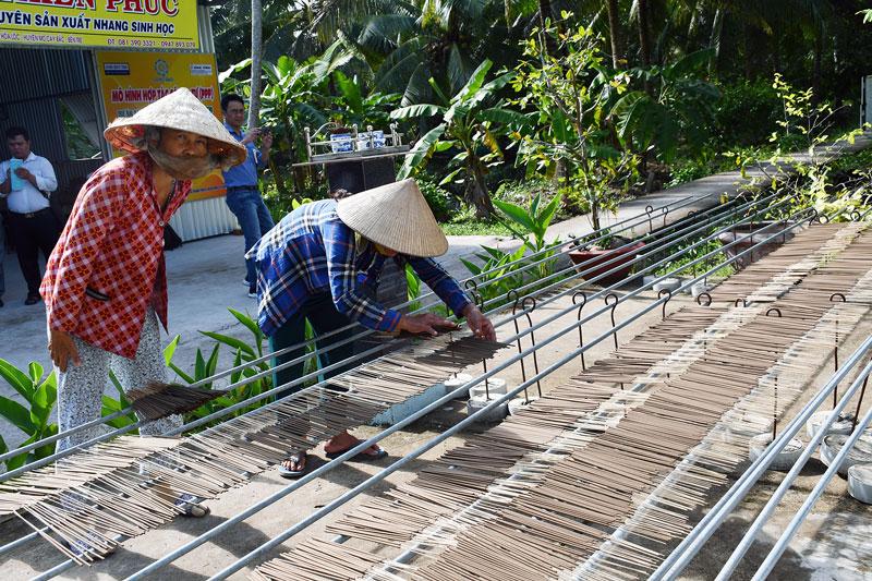 Dự án AMD hỗ trợ lao động nữ ở nông thôn có việc làm ổn định. Ảnh: Hữu Hiệp
