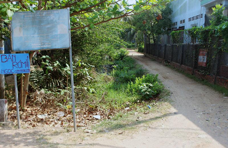 Đất của bà Phương (bên trái) giáp với kênh Tập Đoàn, đất của ông Trí (bên phải) giáp với đường ĐC11. Ảnh: PV