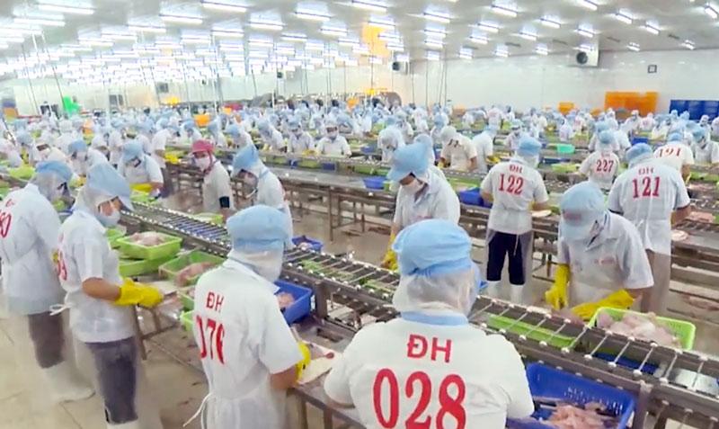 Hoạt động sản xuất tại Công ty sản xuất thủy sản Đông Hải.