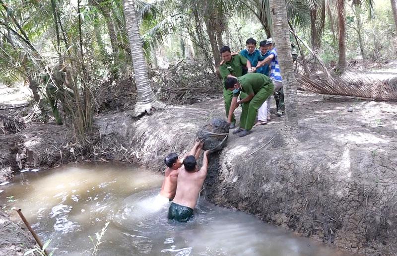 Lực lượng chức năng thu gom quả bom ở huyện Thạnh Phú.
