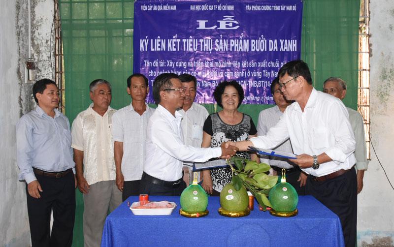 Doanh nghiệp ký kết tiêu thụ với Hợp tác xã bưởi da xanh Quới Sơn.