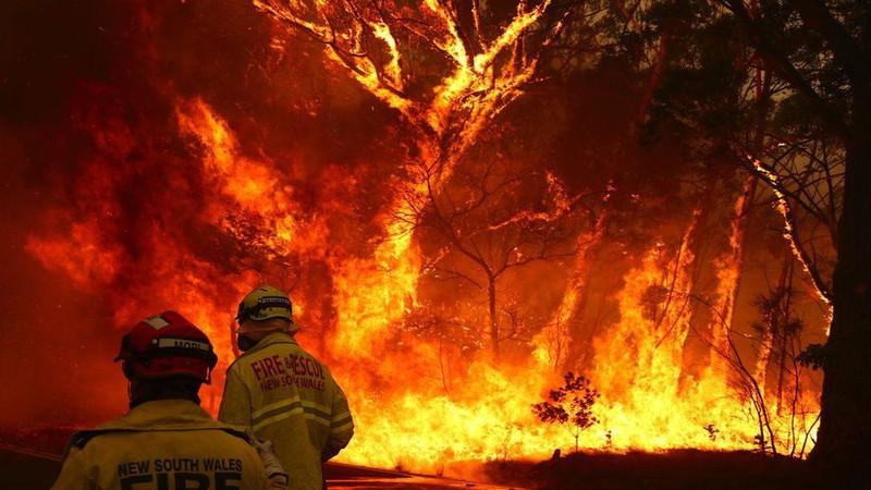 Australia bắt đầu điều tra diện rộng về các vụ hỏa hoạn. Ảnh: BBC