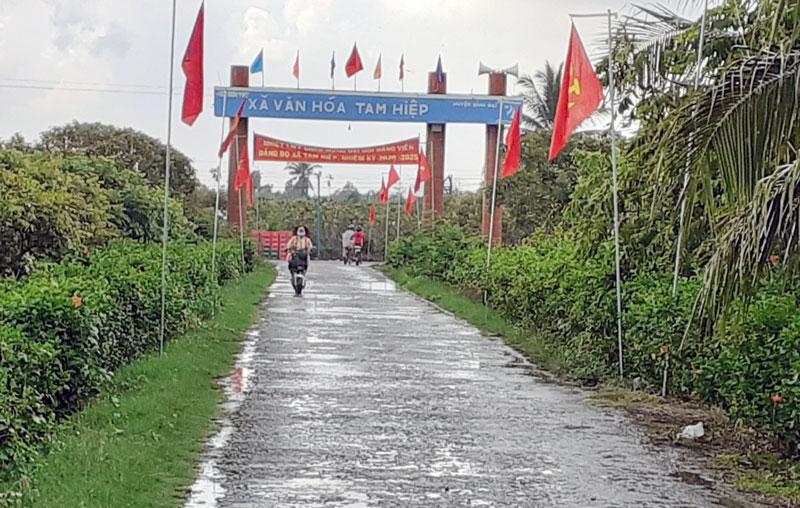 Đường về xã Tam Hiệp, huyện Bình Đại. Ảnh: T.Lập