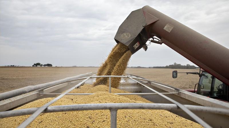 Trung Quốc quyết định ngừng nhập khẩu một số nông sản của Mỹ. (Ảnh:KT)