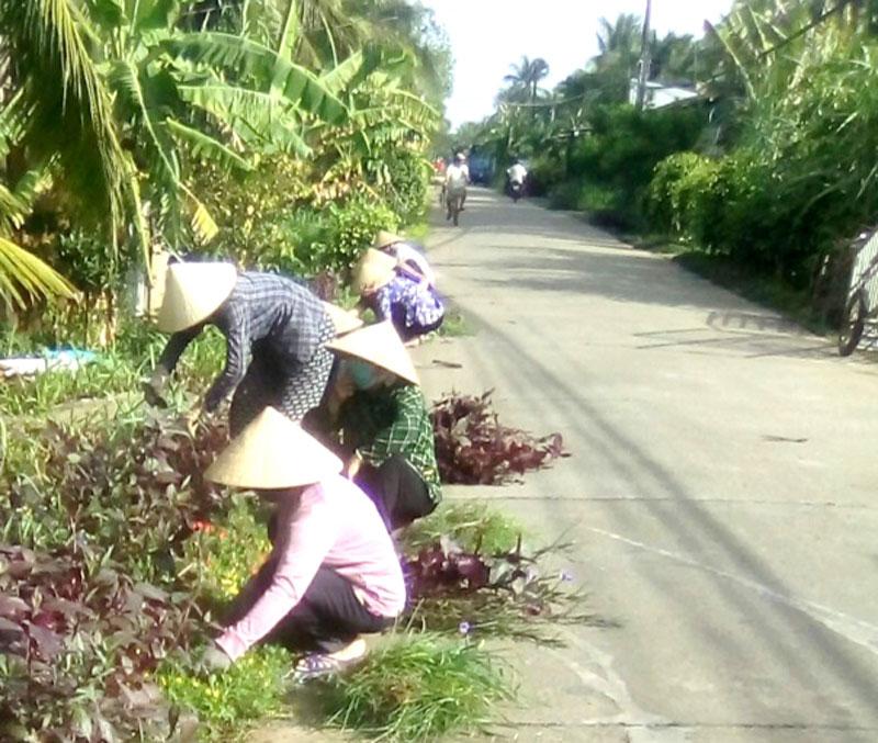 Đường nông thôn xã Thạnh Phú Đông.