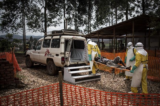 Nhân viên y tế chuyển bệnh nhân nhiễm virus Ebola lên xe cứu thương tại Butembo, CHDC Congo ngày 10-11-2018. Ảnh: AFP/TTXVN