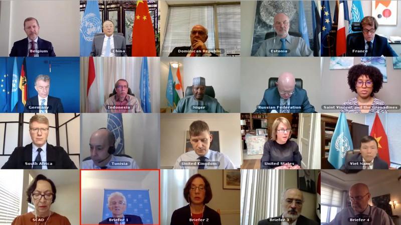 Hội đồng Bảo an thảo luận về tình hình nhân đạo tại Syria ngày 29-6-2020.