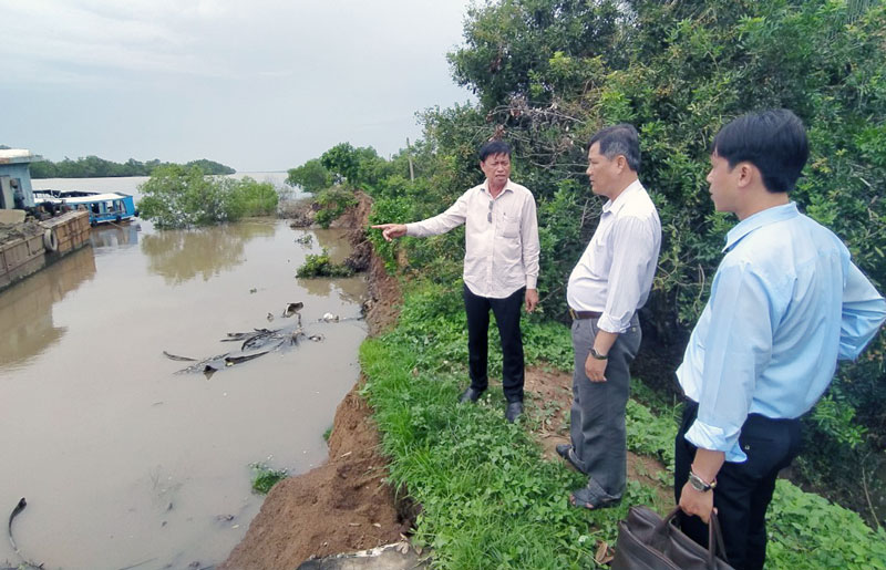 Phó chủ tịch UBND huyện Võ Văn Quân kiểm tra tại tuyến đê sạt lở.