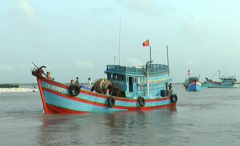 Bình Đại thành lập 38 tổ đội liên kết đánh bắt trên biển hỗ trợ nhau trong đánh bắt và khi gặp sự cố trên biển. Ảnh: T.Hương
