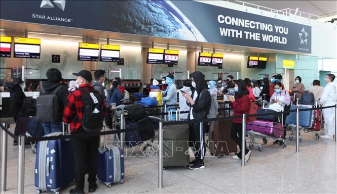 Các công dân Việt Nam xếp hàng chờ làm thủ tục lên máy bay về nước tại sân bay Heathrow. Ảnh: Đình Thư/Pv TTXVN tại Anh
