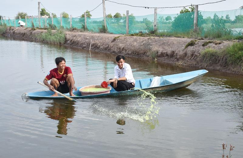 Hướng dẫn nhà nông sử dụng sản phẩm Bồ Đề để cải tạo ao nuôi tôm càng xanh toàn đực tại xã An Điền.
