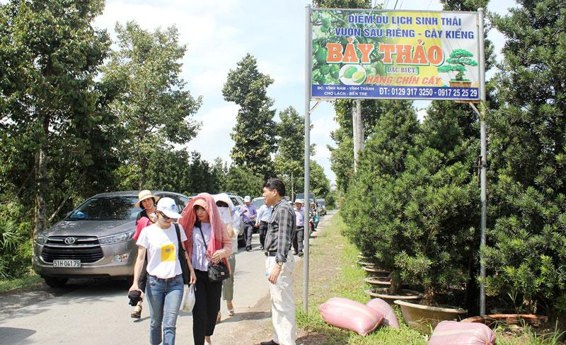Khách du lịch đến trải nghiệm, thưởng thức trái cây sạch ngay tại vườn tại một điểm du lịch sinh thái ở huyện Chợ Lách.