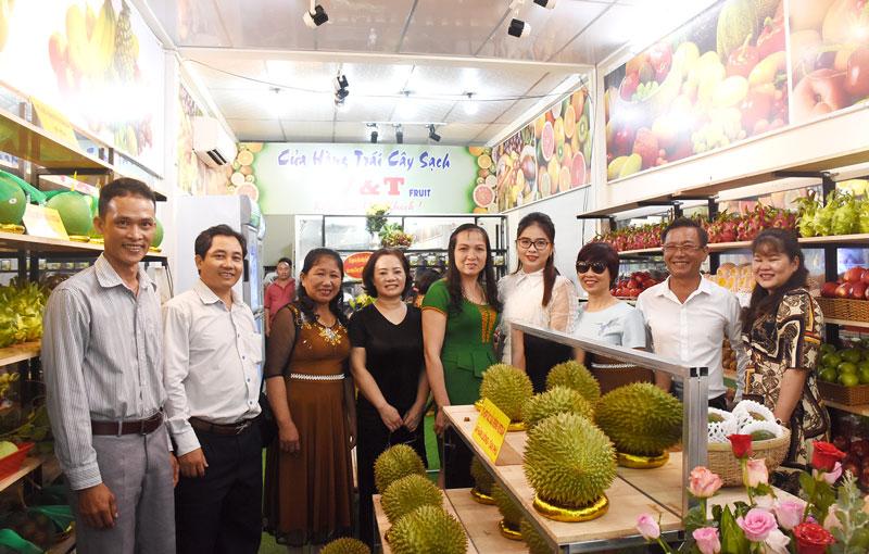 Các tổ hợp tác, hợp tác xã sản xuất trái cây liên kết với doanh nghiệp để đưa sản phẩm ra thị trường. Ảnh: Cẩm Trúc